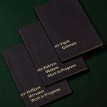 """""""Orbīta"""" atklāj jaunu grāmatu sēriju ar Arvja Vigula un Kirila Kobrina grāmatām"""
